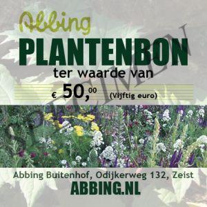 Planten/ cadeaubon € 50,00
