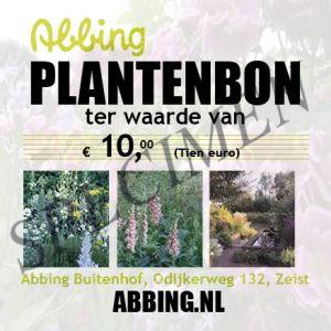 Planten/ cadeaubon € 10,00