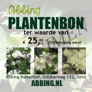 Planten/ cadeaubon € 25,00